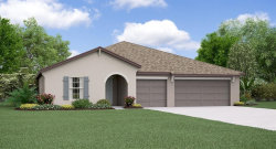 Photo of 13577 Willow Bluestar Loop, RIVERVIEW, FL 33579 (MLS # T3234556)