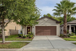 Photo of 9324 Sapphireberry Lane, RIVERVIEW, FL 33578 (MLS # T3234705)