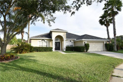 Photo of 19701 Spring Willow Court, ODESSA, FL 33556 (MLS # T3235672)