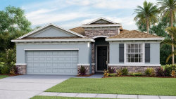 Photo of 3117 Living Coral Drive, ODESSA, FL 33556 (MLS # T3235957)
