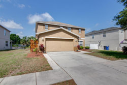 Photo of 10411 Frog Pond Drive, RIVERVIEW, FL 33569 (MLS # T3236495)