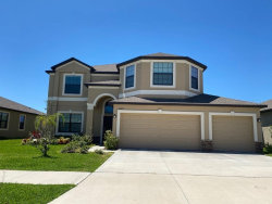 Photo of 13419 White Sapphire Road, RIVERVIEW, FL 33579 (MLS # T3239861)