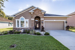 Photo of 2633 Red Fern Drive, DOVER, FL 33527 (MLS # T3243130)