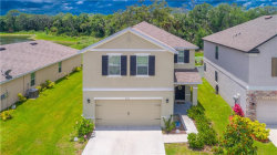 Photo of 4132 Lindever Lane, PALMETTO, FL 34221 (MLS # T3245181)