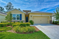 Photo of 17793 Garsalaso Circle, BROOKSVILLE, FL 34604 (MLS # T3245497)