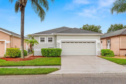 Photo of 8140 Ambersweet Place, LAND O LAKES, FL 34637 (MLS # T3246058)