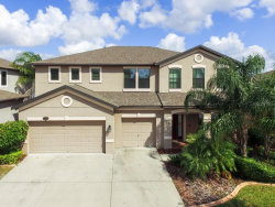 Photo of 11406 Sand Stone Rock Drive, RIVERVIEW, FL 33569 (MLS # T3246315)