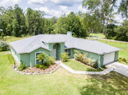 Photo of 19489 Hidden Oaks Drive, BROOKSVILLE, FL 34604 (MLS # T3246562)