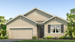 Photo of 11706 Miracle Mile Drive, RIVERVIEW, FL 33578 (MLS # T3249613)