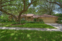 Photo of 2843 Timber Knoll Drive, VALRICO, FL 33596 (MLS # T3250417)