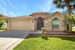 Photo of 6004 Martinglade Place, LITHIA, FL 33547 (MLS # T3251476)