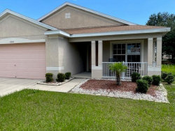 Photo of 11609 Mountain Bay Drive, RIVERVIEW, FL 33569 (MLS # T3251658)