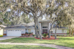 Photo of 13012 Creek Manor Court, RIVERVIEW, FL 33569 (MLS # T3252857)
