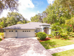 Photo of 12501 Riverglen Drive, RIVERVIEW, FL 33569 (MLS # T3252895)