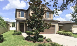 Photo of 4510 Savannah Holly Place, RIVERVIEW, FL 33578 (MLS # T3253184)