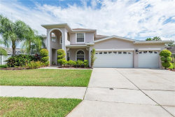 Photo of 6606 Buckingham Palms Way, TAMPA, FL 33647 (MLS # T3253616)