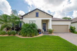 Photo of 13257 Orca Sound Drive, RIVERVIEW, FL 33579 (MLS # T3253993)