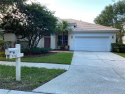 Photo of 9202 Meadow Lane Court, TAMPA, FL 33647 (MLS # T3256145)