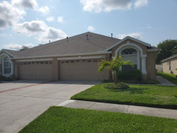Photo of 2741 Tanglewylde Drive, LAND O LAKES, FL 34638 (MLS # T3257623)