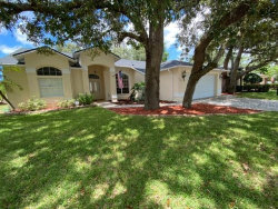 Photo of 7749 Damask Lane, NEW PORT RICHEY, FL 34654 (MLS # T3258323)
