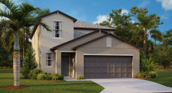 Photo of 3727 Daisy Bloom Place, TAMPA, FL 33619 (MLS # T3259533)