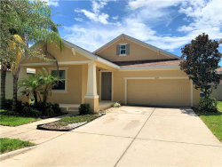 Photo of 6919 Rocky Canyon Way, TAMPA, FL 33625 (MLS # T3261721)