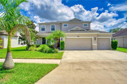 Photo of 7506 Tangle Bend Drive, GIBSONTON, FL 33534 (MLS # T3264014)