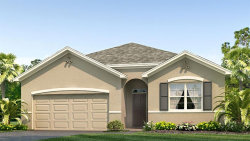 Photo of 2921 Living Coral Drive, ODESSA, FL 33556 (MLS # T3265127)