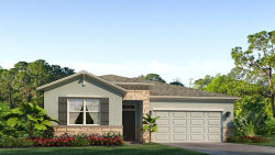 Photo of 5915 Oak Bridge Court, LAKEWOOD RANCH, FL 34211 (MLS # T3266276)