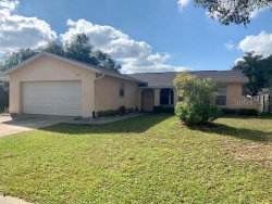 Photo of 1008 Celtic Court, BRANDON, FL 33510 (MLS # T3266528)