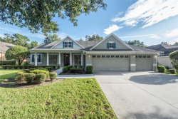 Photo of 15208 Kestrelrise Drive, LITHIA, FL 33547 (MLS # T3266553)