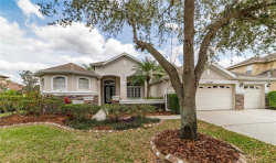 Photo of 15721 Ibisridge Drive, LITHIA, FL 33547 (MLS # T3267693)