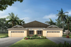 Photo of 11525 Cambium Crown Drive, RIVERVIEW, FL 33569 (MLS # T3267932)