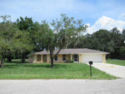 Photo of 9030 Sharon Drive, NEW PORT RICHEY, FL 34654 (MLS # T3267952)
