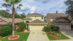 Photo of 7932 Endless Summer Court, LAND O LAKES, FL 34637 (MLS # T3272374)