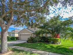 Photo of 11103 Silver Dancer Drive, RIVERVIEW, FL 33579 (MLS # T3272518)