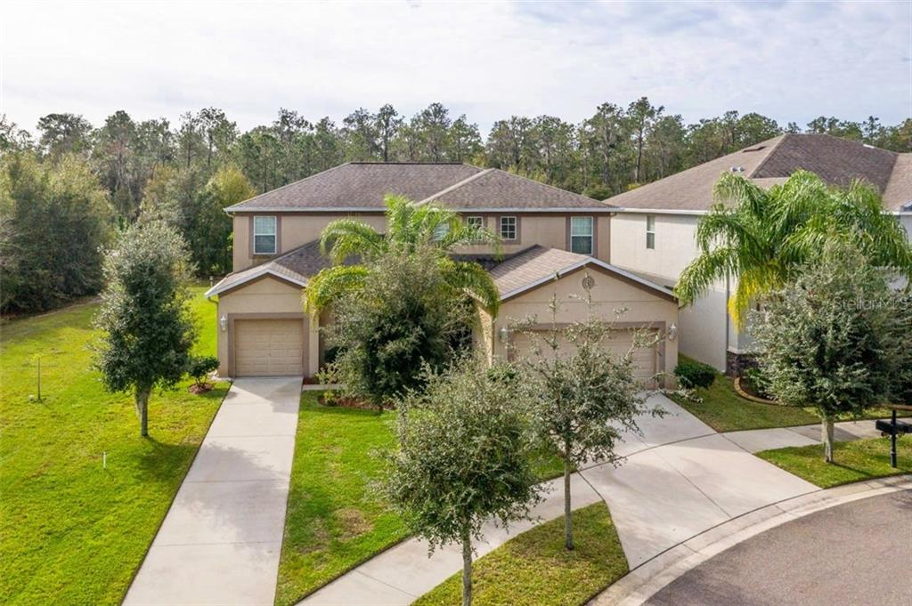 Photo for 12133 Streambed Drive, RIVERVIEW, FL 33579 (MLS # T3272640)