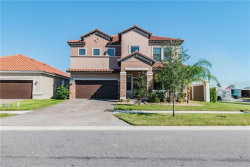 Photo of 13196 Green Violet Drive, RIVERVIEW, FL 33579 (MLS # T3277496)