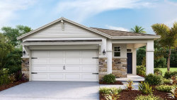 Photo of 5250 Sunshine Drive, WILDWOOD, FL 34785 (MLS # T3278349)