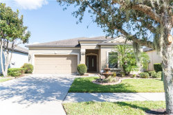 Photo of 11514 Scarlet Ibis Place, RIVERVIEW, FL 33569 (MLS # T3278396)