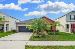 Photo of 11708 Winterset Cove Drive, RIVERVIEW, FL 33579 (MLS # T3278501)