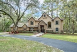 Photo of 2409 Batten Road, BROOKSVILLE, FL 34602 (MLS # T3278703)