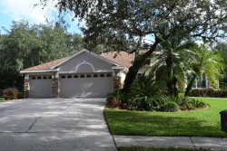 Photo of 5961 Jaegerglen Drive, LITHIA, FL 33547 (MLS # T3283637)