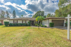 Photo of 3803 Ridgeview Place, VALRICO, FL 33594 (MLS # T3285112)