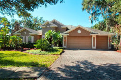 Photo of 16708 Eagle Oak Drive, ODESSA, FL 33556 (MLS # U7839909)