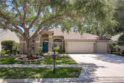 Photo of 3776 Siena Lane, PALM HARBOR, FL 34685 (MLS # U8000777)