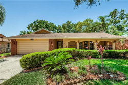 Photo of 3076 Hillside Lane, SAFETY HARBOR, FL 34695 (MLS # U8001130)