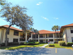 Photo of 1911 Hammock Pine Boulevard, Unit 1911, CLEARWATER, FL 33761 (MLS # U8001419)