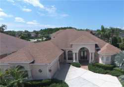 Photo of 15416 Wind Whisper Drive, ODESSA, FL 33556 (MLS # U8004562)