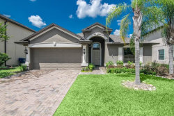 Photo of 1569 Imperial Key Drive, TRINITY, FL 34655 (MLS # U8005486)